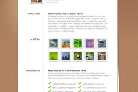 MyResume-Wordpress-Theme