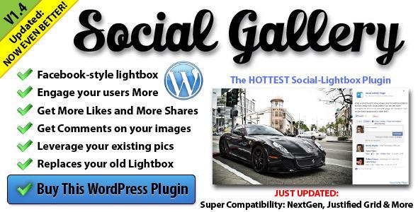 SocialGalleryWordpress
