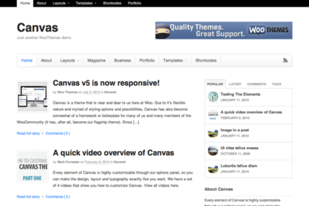 canvas-wordPress-theme