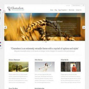 chameleon-wordpress-theme
