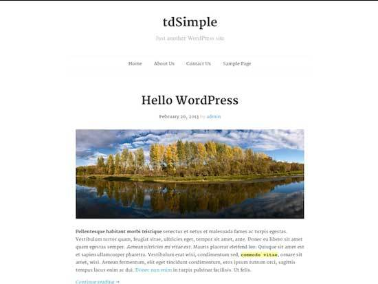 tdSimple-wordpress-theme