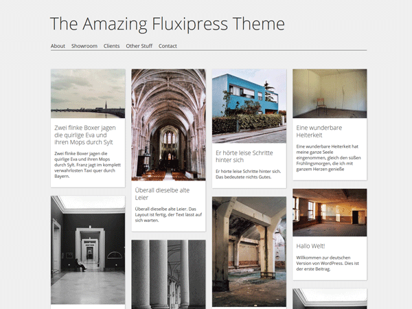 Fluxipress-wordpress-theme
