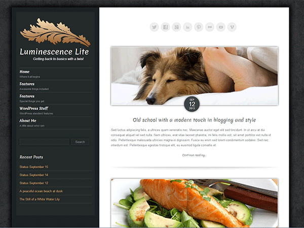Luminescence-Lite-wordpress-theme