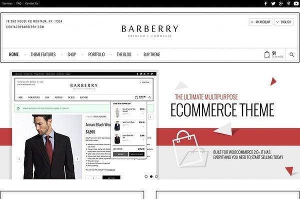 theme-wordpress-Barberry