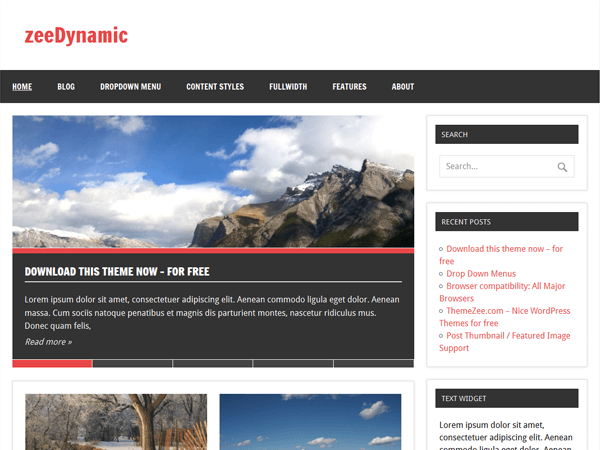 theme-wordpress-zeedynamic