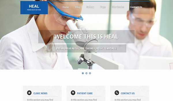 heal-WordPress-Theme