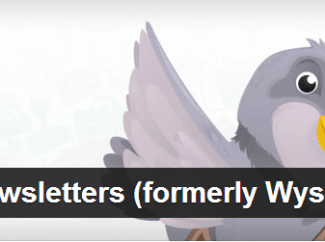 plugin-newsletter-wordpress