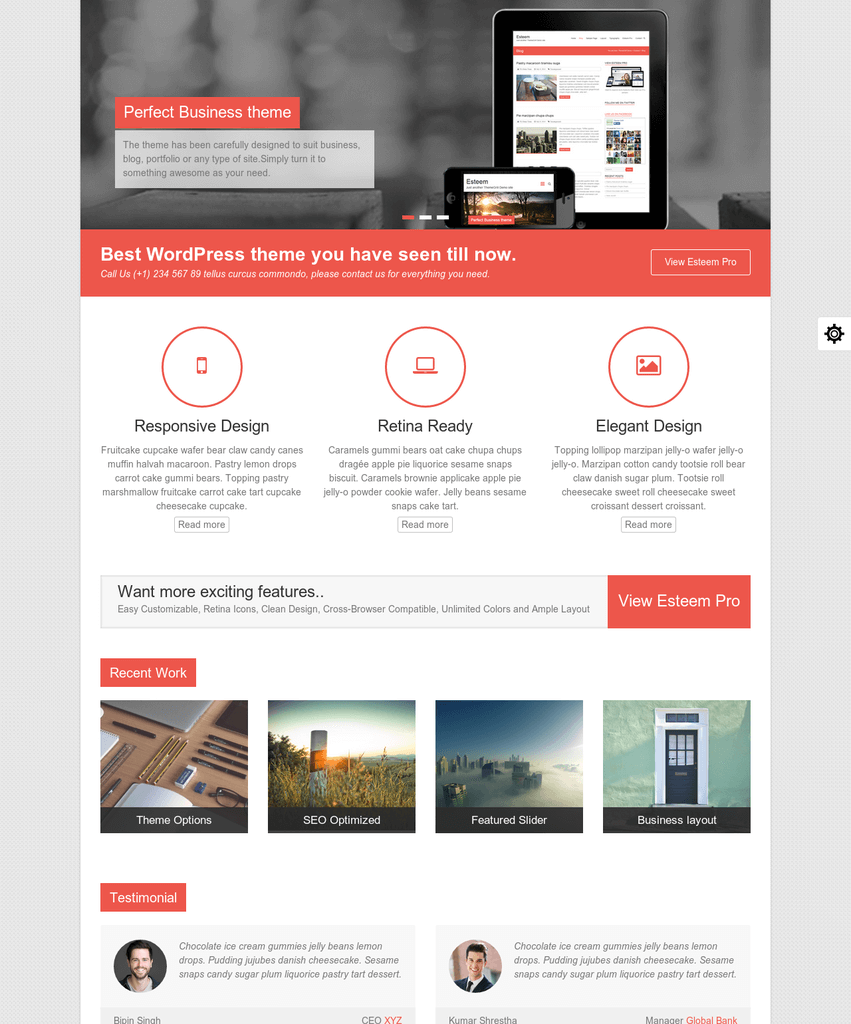 esteem-wordpress-theme