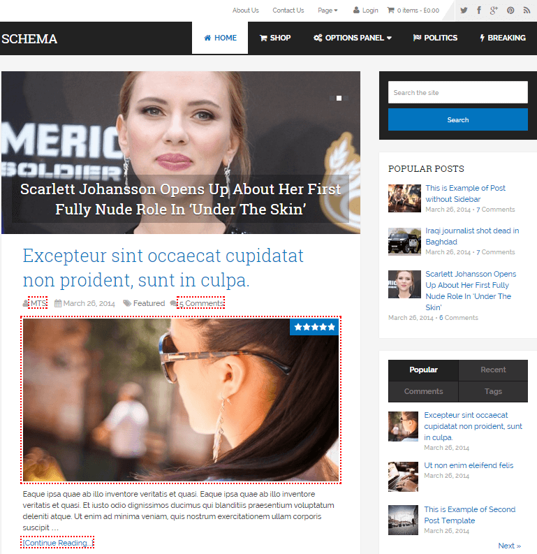 schema-wordpress-theme-1