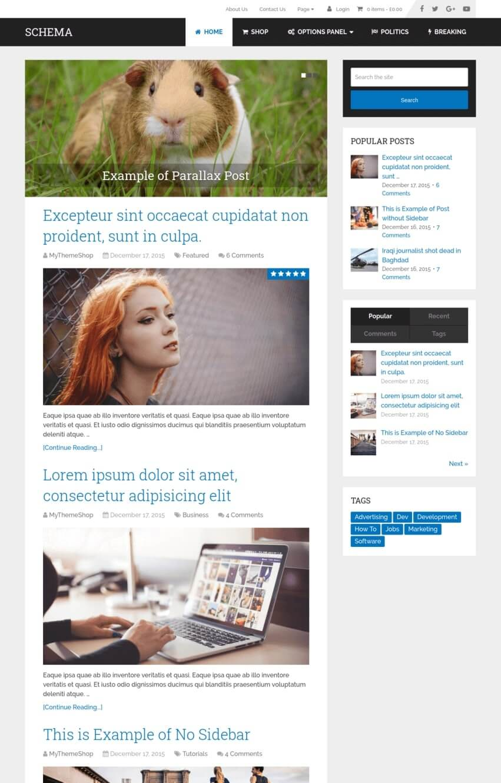 theme-wordpress-schema-seo