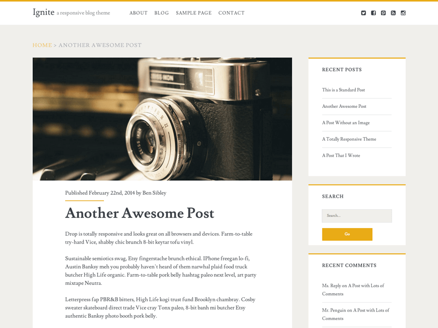 ignite-wordpress-theme