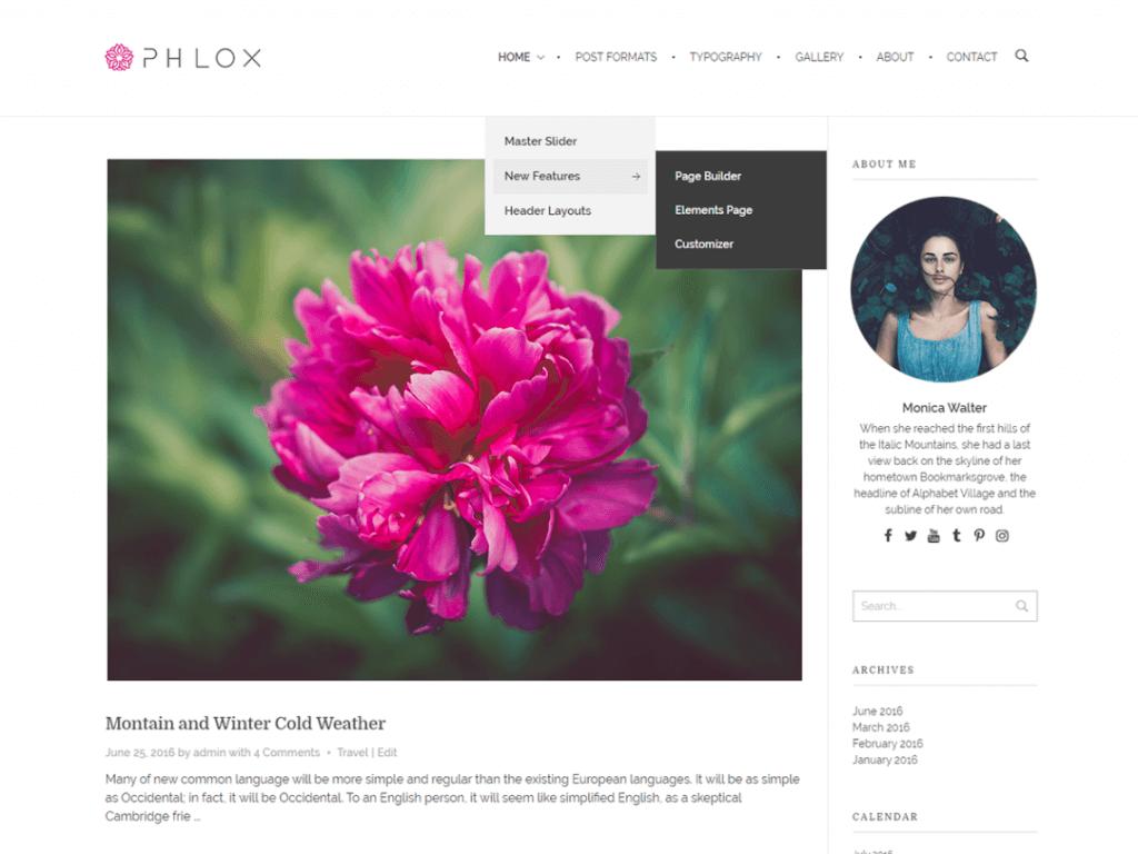 phlox-theme-wordpress-gratuit
