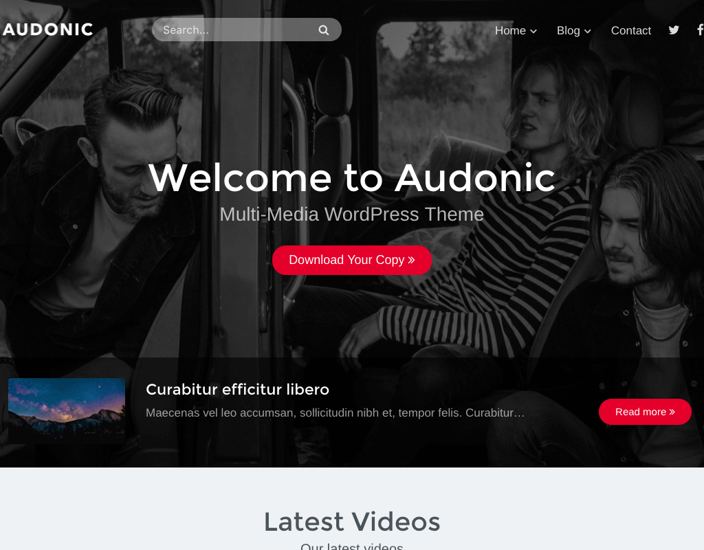 audonic-wordpress-theme