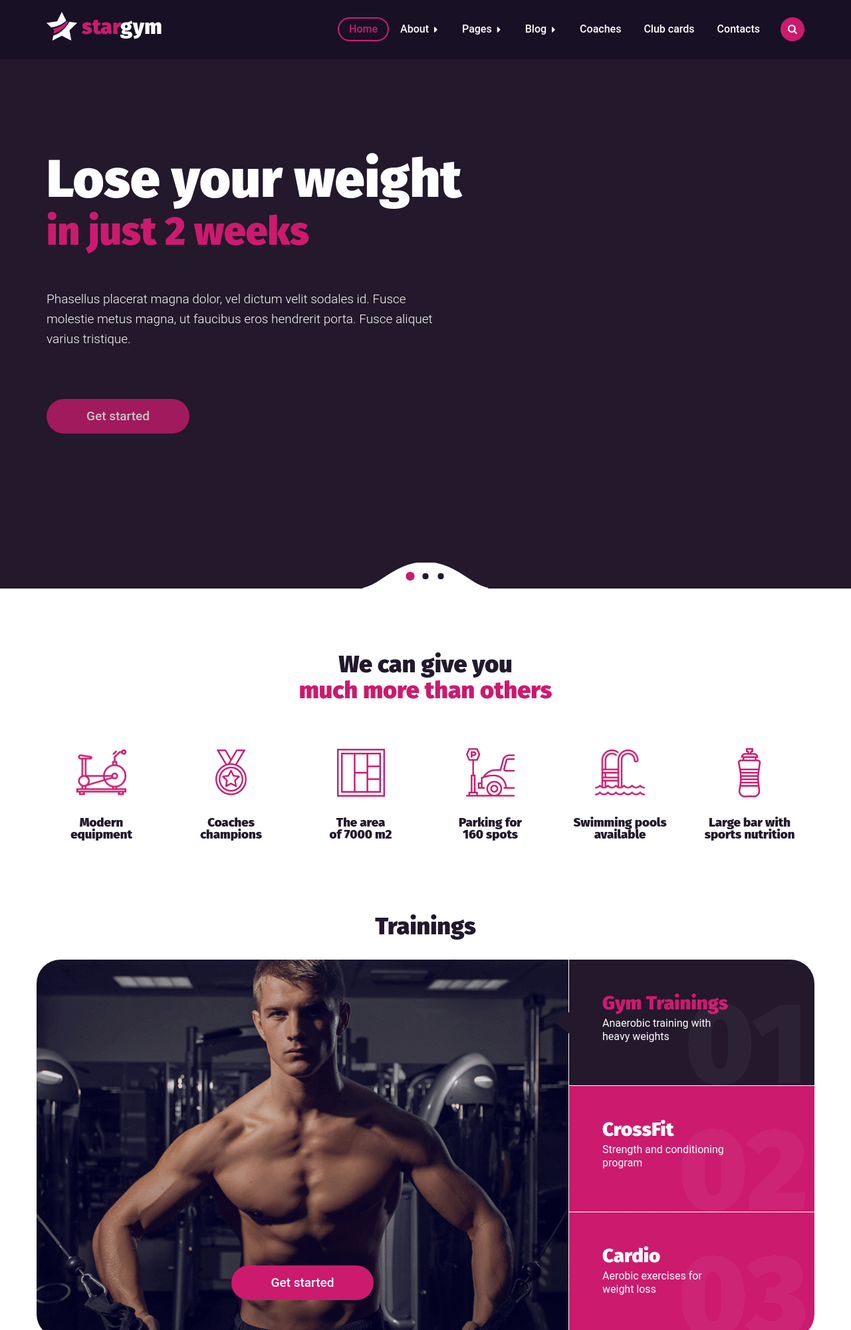 stargym-wordpress-theme