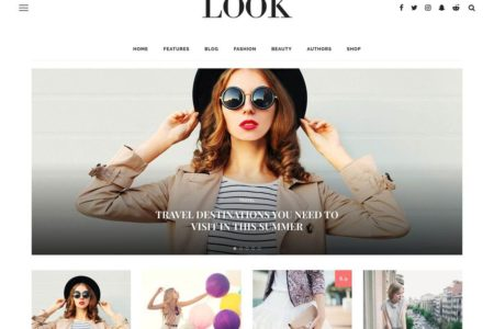 theme-wordpress-look