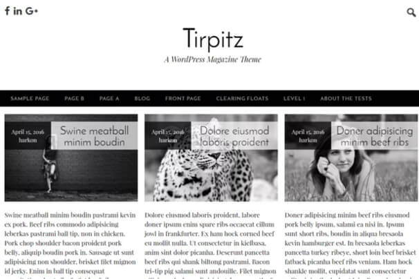 theme-wp-tirpitz