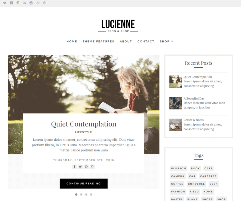 theme-wp-gratuit-lucienne