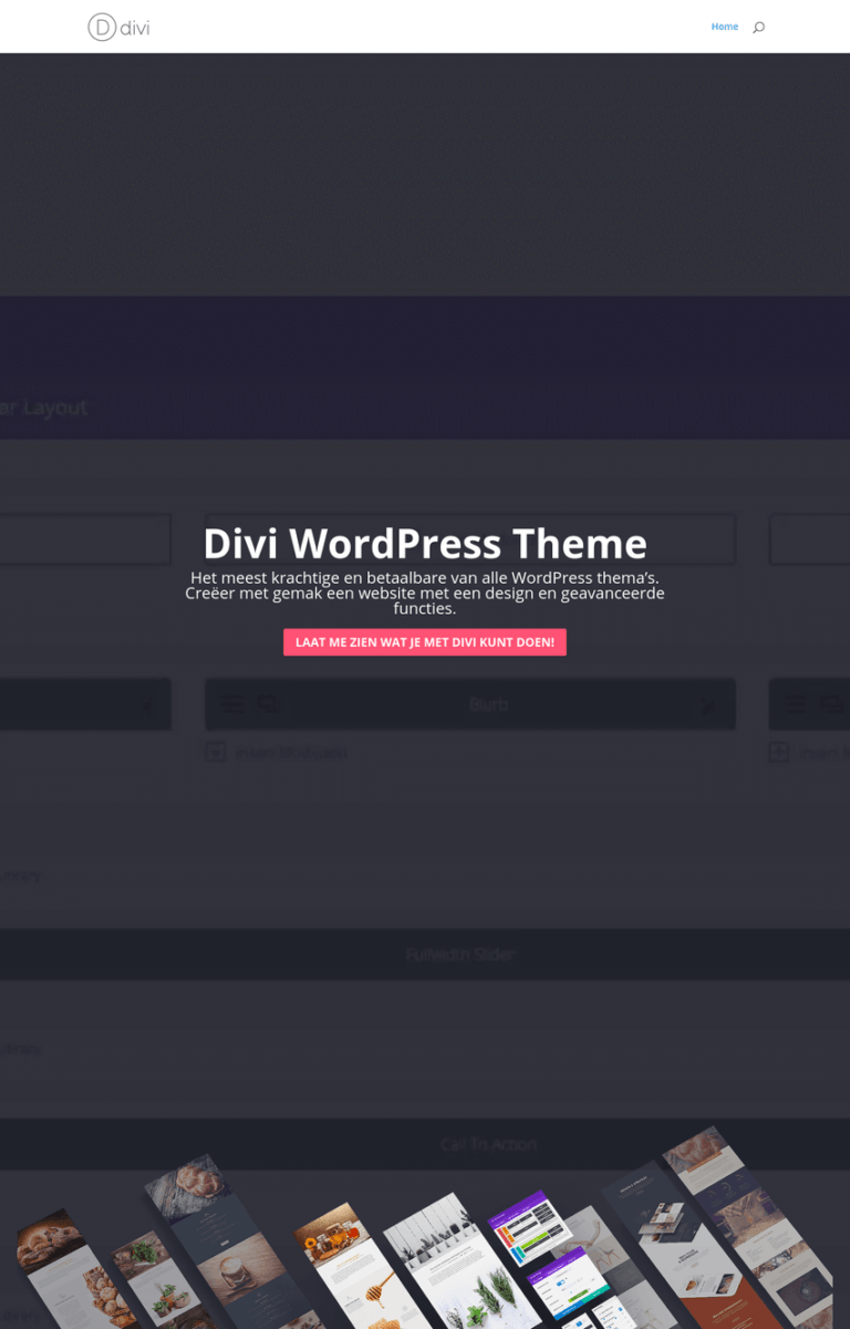 divi-theme-netherlands
