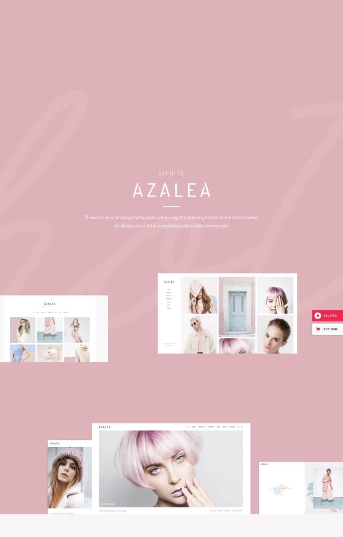 azalea-wordpress-blog-mode